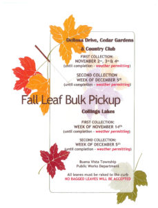 2016leafcollection